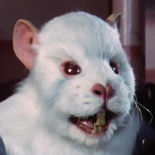 Foto do perfil de Aardsy
