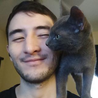 Sean P profile picture