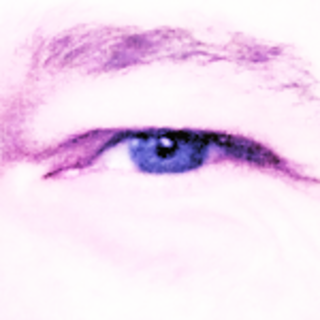 bulgrin profile picture