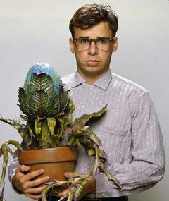 Photo of Rick Moranis