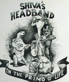 Photo of Shiva's Head Band