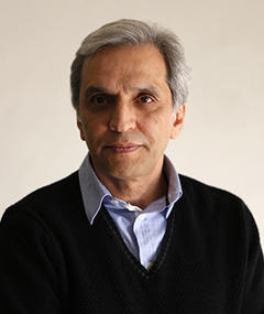 Photo of Mohsen Abdolvahab