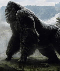 King Kong adlı kişinin fotoğrafı
