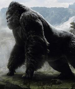 Photo of King Kong