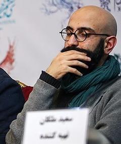 Photo of Meysam Molaei