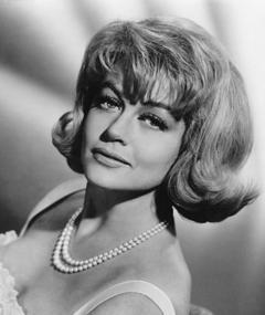 Dorothy Malone adlı kişinin fotoğrafı