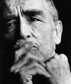 Vittorio Gassman Movies Bio And Lists On Mubi