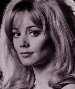 Photo of Elaine Taylor