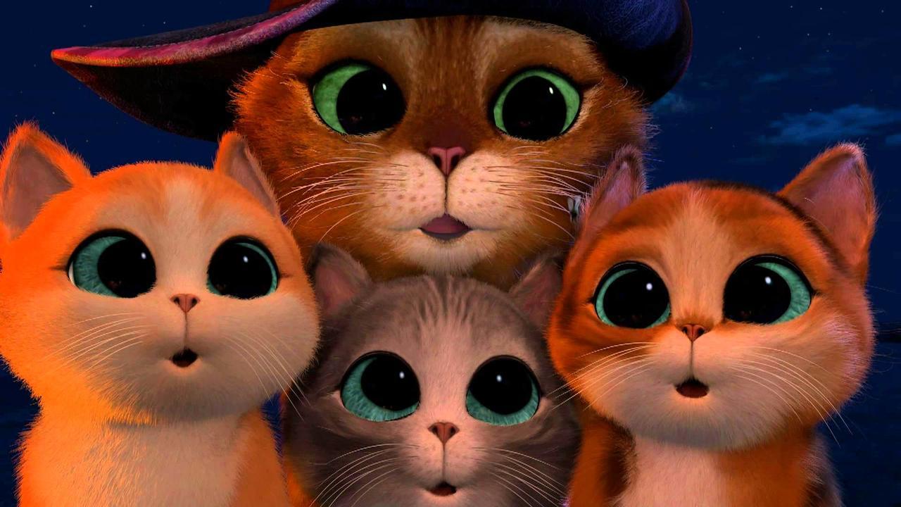 котята из шрека фото с глазами картинки самых важных