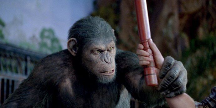 """image of the Review: Rupert Wyatt's """"Rise of the Planet of the Apes"""" and Joe Cornish's """"Attack the Block"""""""