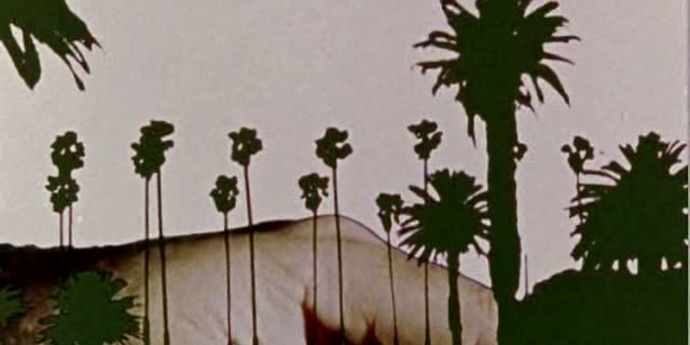 image of the Daily Briefing. Manohla Dargis on the Avant-Garde in LA