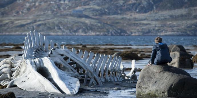 """image of the The Coast of Utopia: Andrei Zvyagintsev's """"Leviathan"""""""