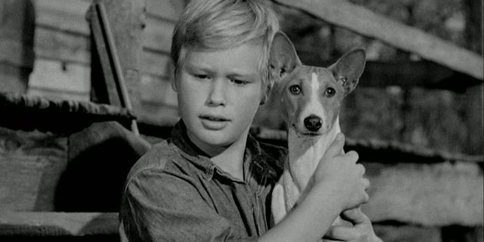 """image of the The Forgotten: William A. Wellman's """"Good-bye, My Lady"""" (1956)"""