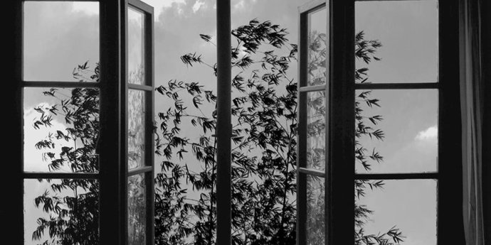 """image of the Review: In Search of Lost Time—Abbas Kiarostami's """"24 Frames"""""""