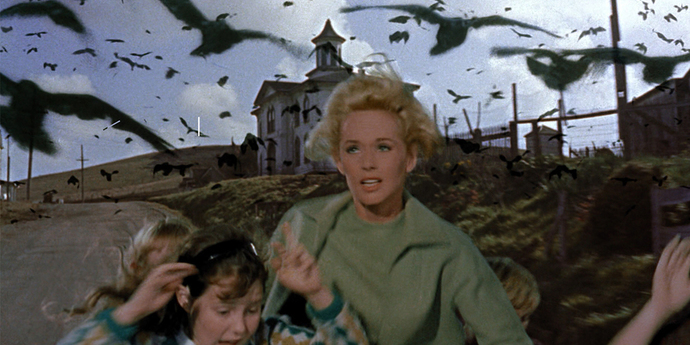 """image of the A Masterclass in Horror: Alfred Hitchcock's """"The Birds"""""""